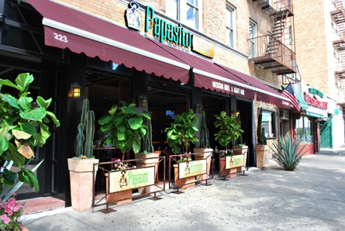 Papasito mexican grill agave bar the review for Agave mexican cuisine